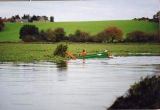 1998 jussie-maréchale