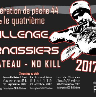 teaser challenge 2017