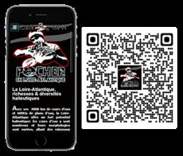 vignette-site-web-fdp44