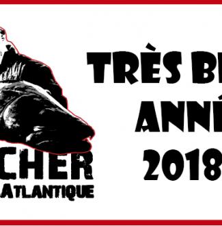 belle-année-2018